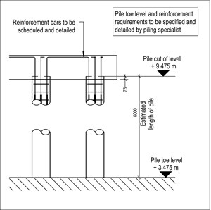 LOD 4 2D Detail representation of In situ concrete augered piling systems.
