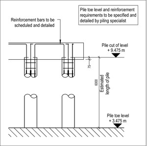 LOD 5 2D Detail representation of In situ concrete augered piling systems.
