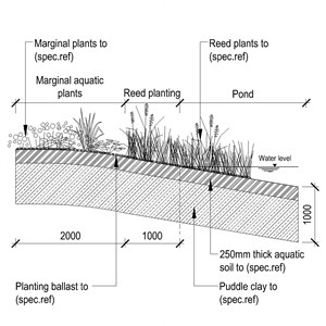 LOD 4 2D Section representation of Marginal planting systems.