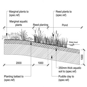 LOD 5 2D Section representation of Marginal planting systems.