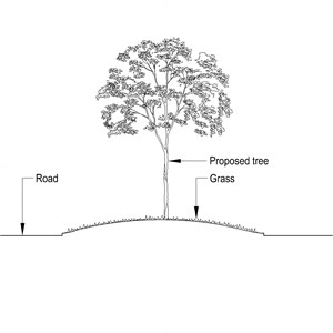 LOD 3 2D Section representation of Pit-planted tree and shrub systems.