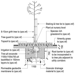 LOD 5 2D Section representation of Pit-planted tree and shrub systems.